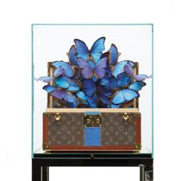 Louis Vuitton Azur Blue Stripe - FERAL ROMAN - Galeries Bartoux