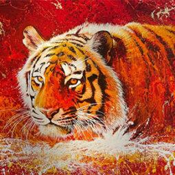 Tigre - NOE TWO - Galeries Bartoux