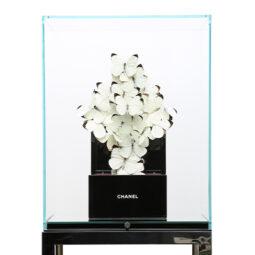 Chanel Pure V - FERAL ROMAN - Galeries Bartoux