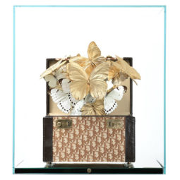 Dior Gold - FERAL ROMAN - Galeries Bartoux