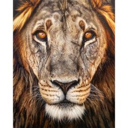 Lion - Beast of Saffron - SIDER NICK - Galeries Bartoux