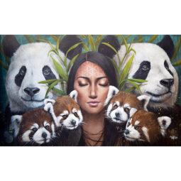 Les pandas - WILKINS SOPHIE - Galeries Bartoux