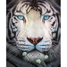 Cerulean Beauty Tiger - SIDER NICK - Galeries Bartoux