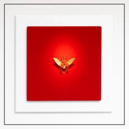 SAMUEL DEJONG – Nouvelle collaboration - Galeries Bartoux