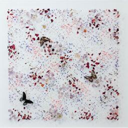 Wildlands - MASTERS ANNA - Galeries Bartoux